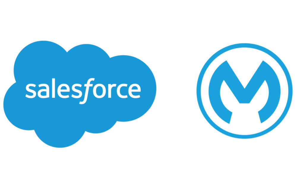 Salesforce Fell Hard for Mulesoft