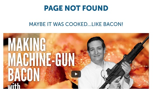 Ted Cruz 404 Seite