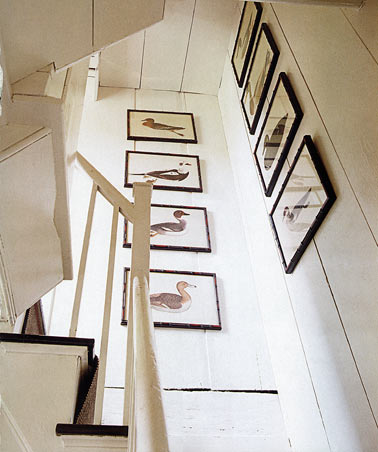 Tom Scheerer - for the birds stairway