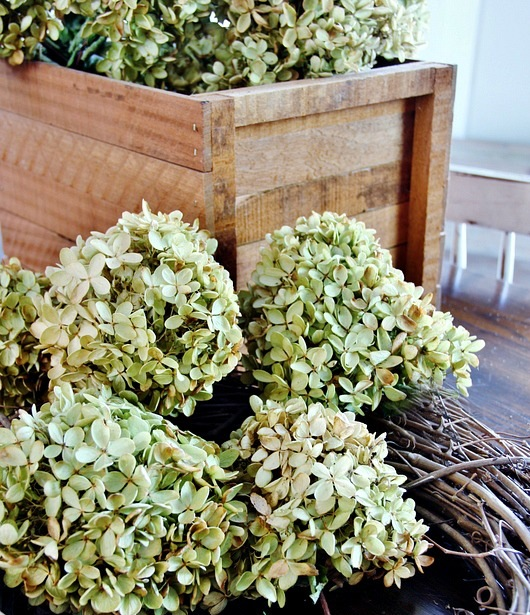 how-to-make-a-hydrangea-wreath-supplies