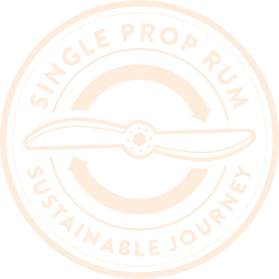 Sustainable Journey Logo