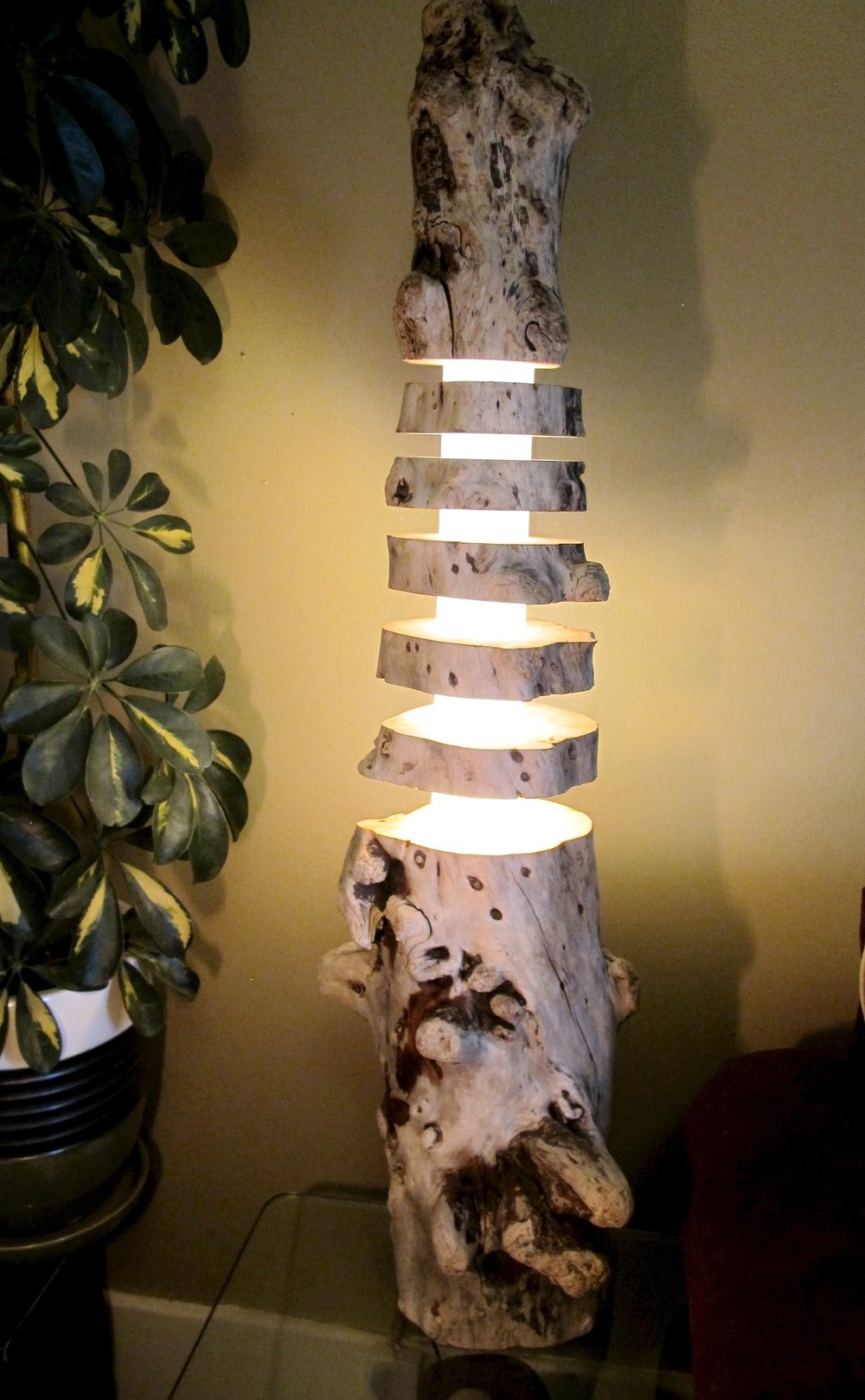 Driftwood spine lamp -  Sun bleached driftwood glows through a centre column with disk spacing evoking the idea of a vertebrae.  For sale $299.
