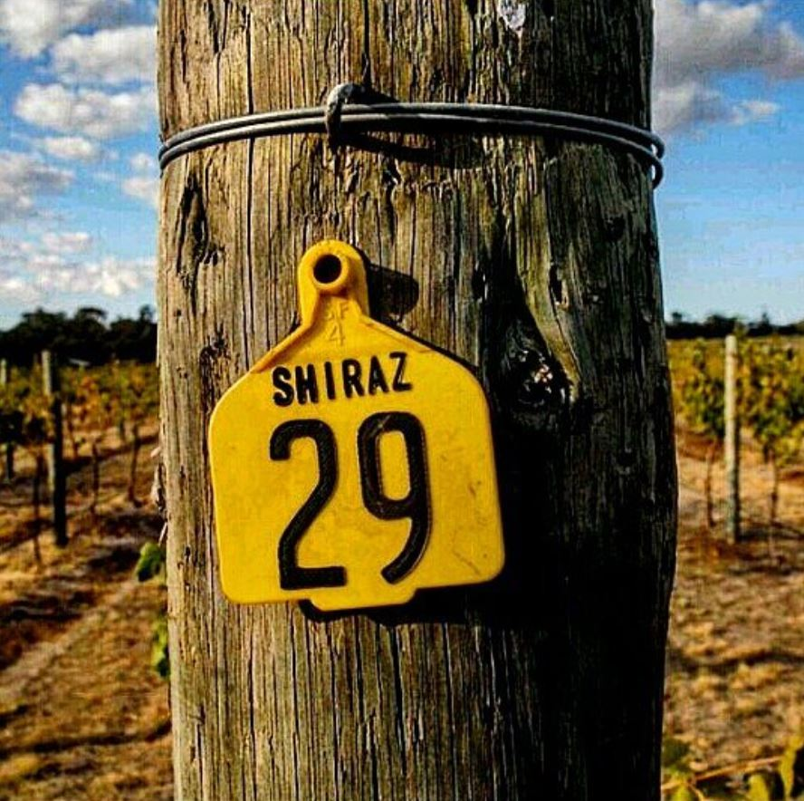 Vineyard marker