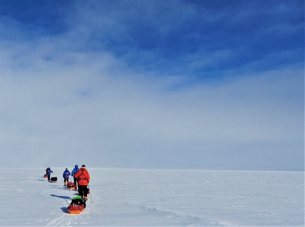 2018-01-07 South Pole (Gibbons CP A900) 003.jpg