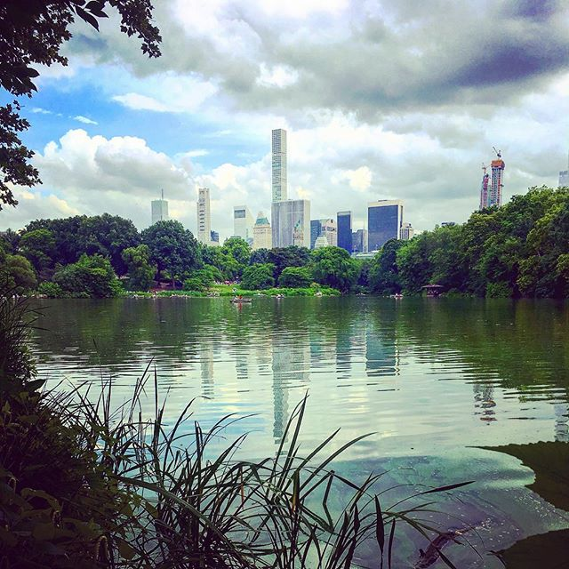 Sunday in Central Park  #NYC #centralpark #manhattan #sunday #naturalnewyork #nycparks #scenicny #newyorktrails #naturewalk #getoutside #outdoorsadventure #nycadventures #nature #bigapple #cityhikes #manhattenskyline