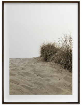 Dune by Ashleigh Ninos