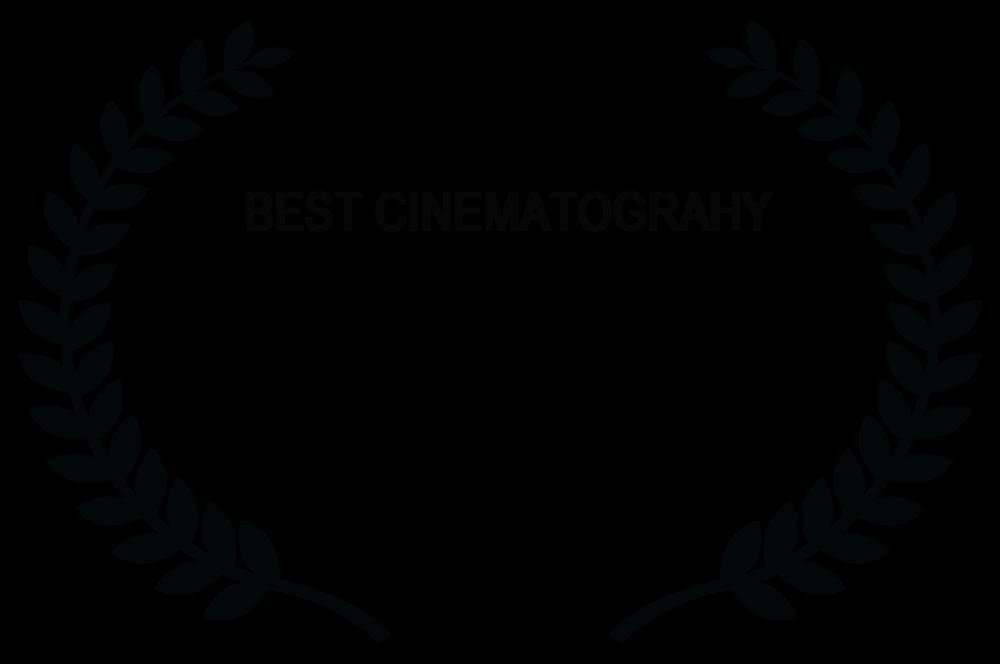 BEST CINE Baltimore Next Media Web Fest - 2018.png