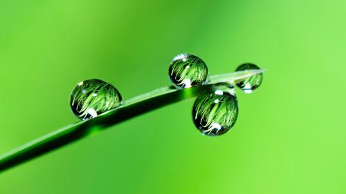 Gewässerschutz - Fachbetrieb im Sinne des § 19 WHG