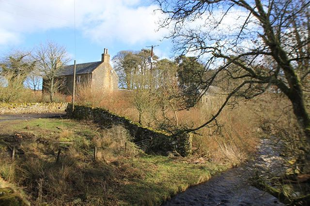 Office site visit this morning to this beautiful farmhouse and Steading. Our client plans to rescue these buildings and convert to holiday accommodation. .  #holidayaccommodation #scottisharchitecture #sitevisit #renovation  #scotland  #stonewalls  #scotspine