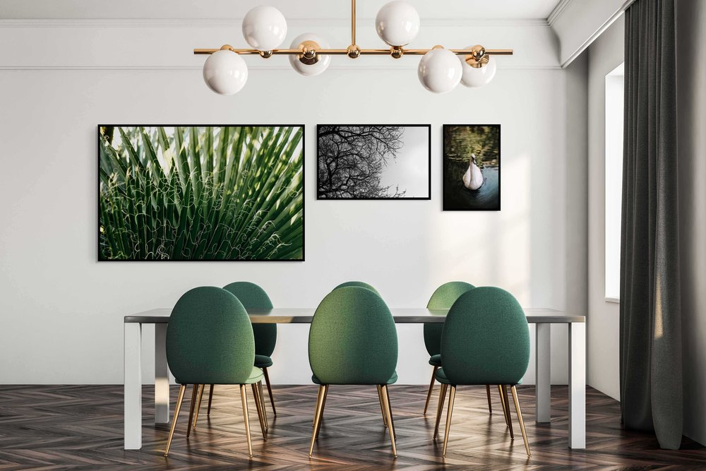 green chairs 3.jpg
