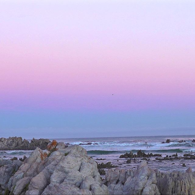 Our morning sunrise location 🌅 🙏🏻 #documentary #capetown #conservation #africanpenguin