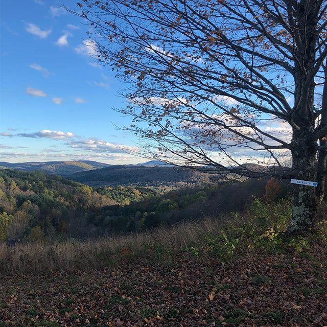 Damn, Vermont. You pretty.