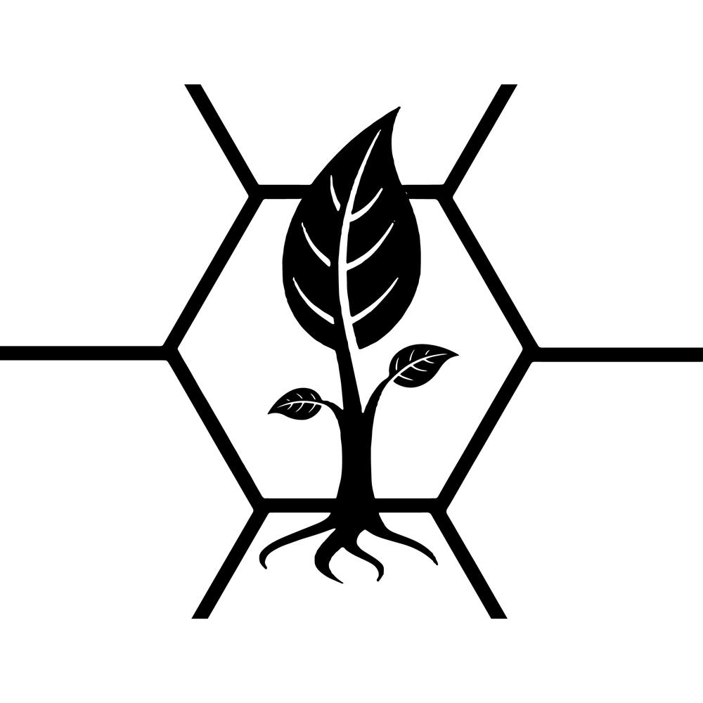 Expanding Edge Logo 1-01.png