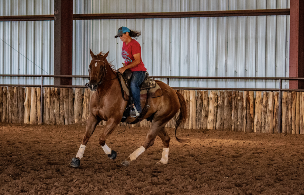 Dani teaching a horse to carry himself balanced and correct - and making it look effortless.    ~  Photo by Bobbi Jo Lampman (fb:Sweet Tea and Mascara)