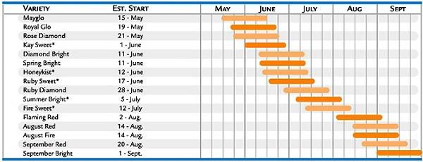 nectarines_chart1.jpg