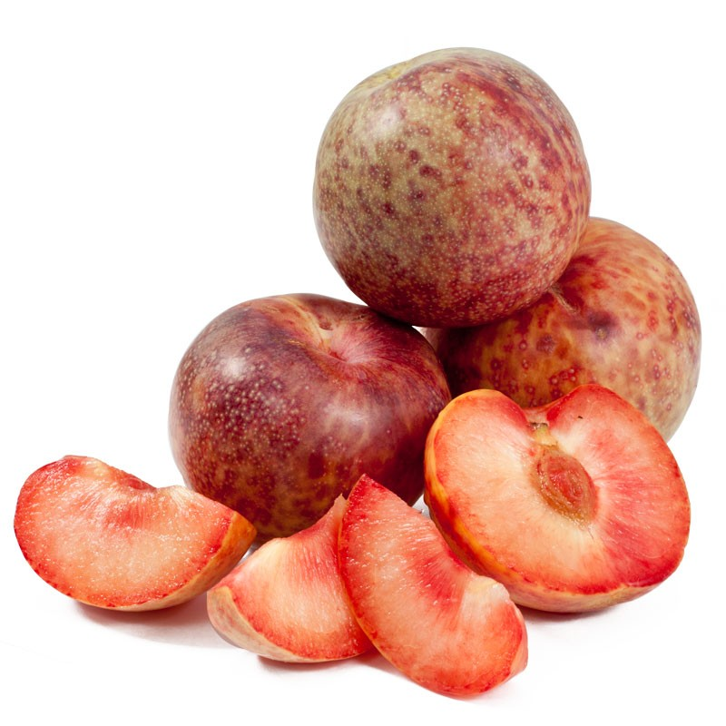 Pluots® - The hottest new varieties on the market are in the ground. From early season Flavorich to the Flavor Fall in September, the best tasting piece of California tree fruit is available all season long. We are continuing to expand the Pluot® line-up with the sweetest new varieties of YUMMY™ brand plums now in the ground. Ourcontinual updating of varieties will keep you ahead of the competition by giving the consumers great tasting products.