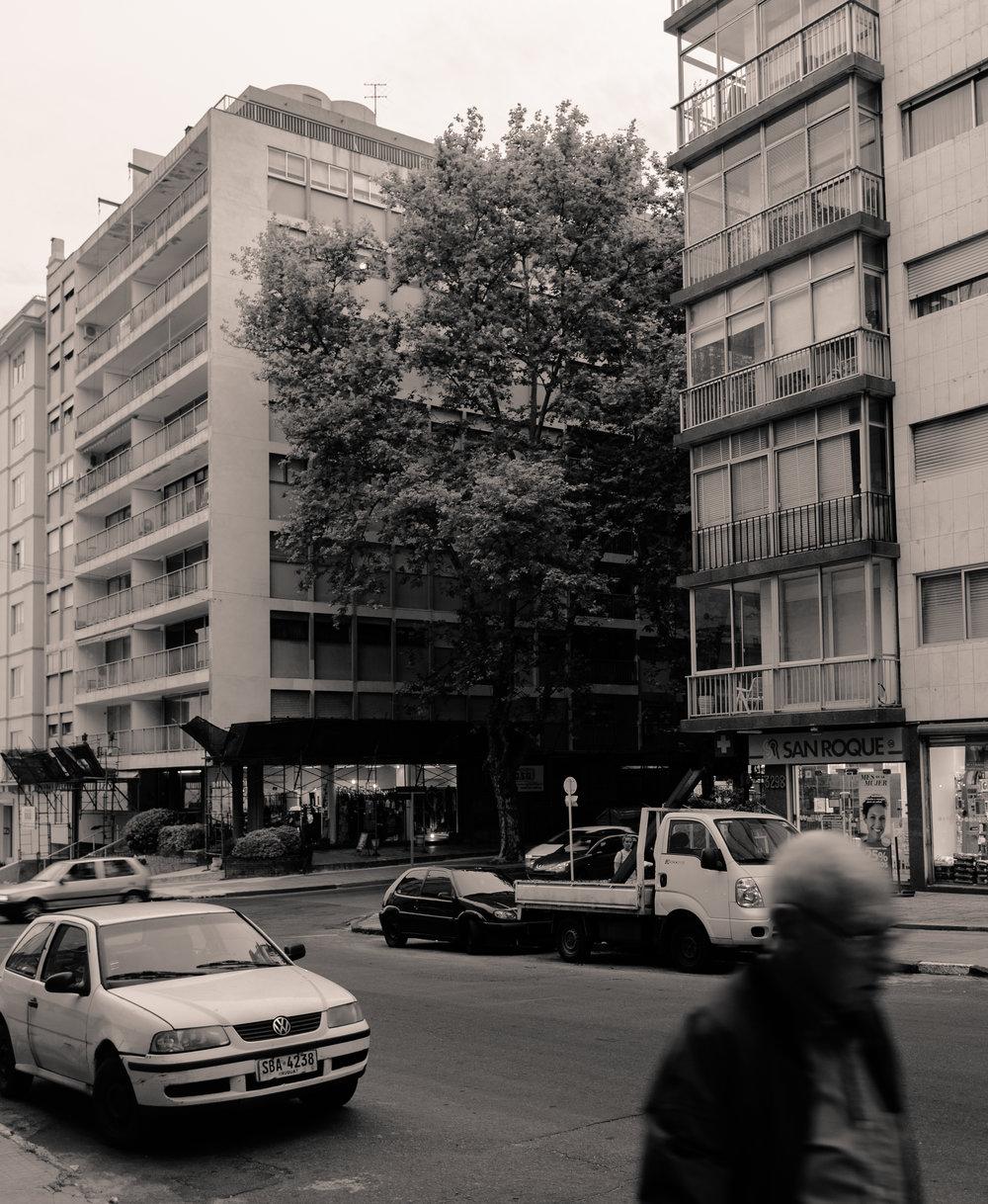entre edificios.jpg