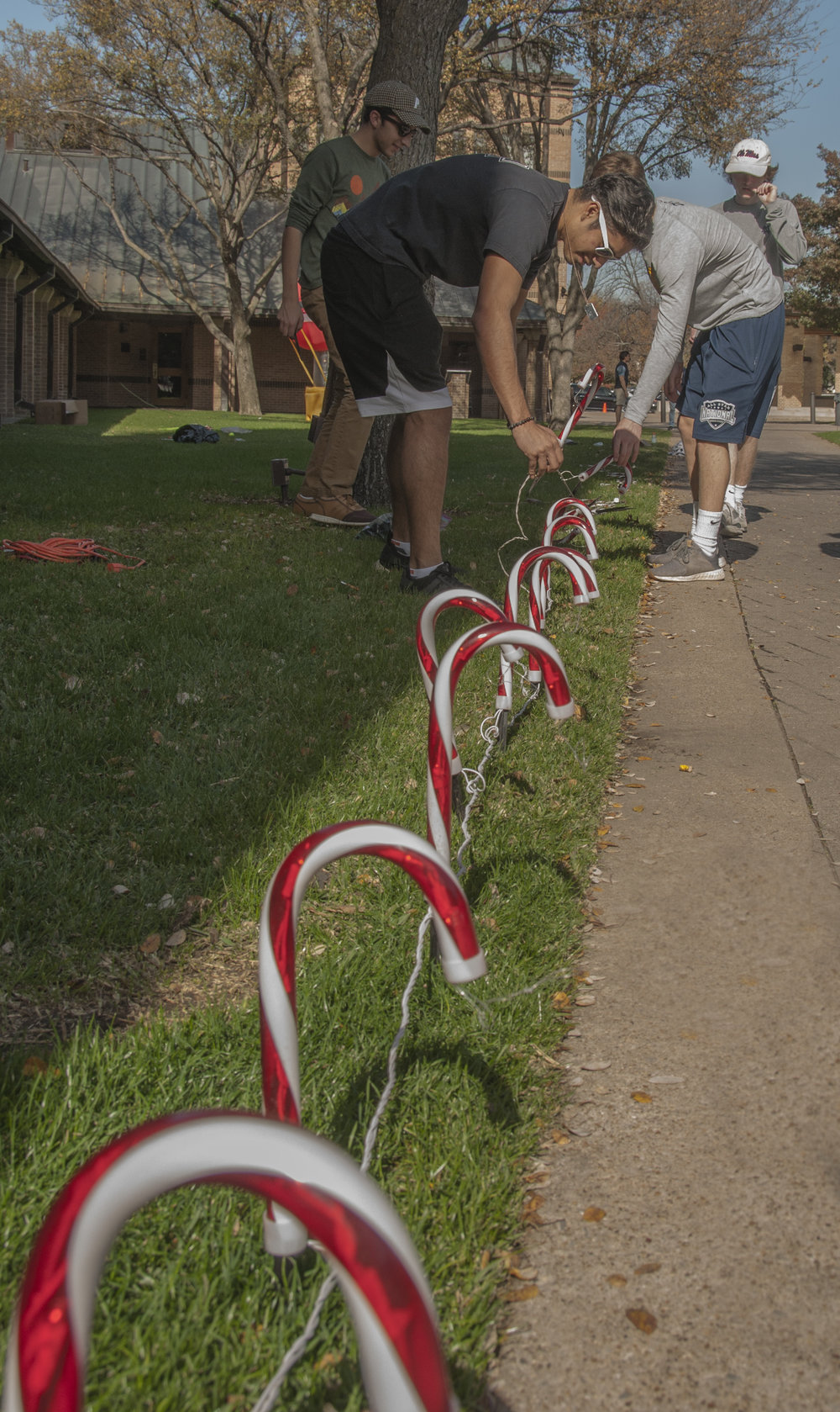 """I think the most important thing I've learned doing this is how to delegate,"" holiday lights committee member Mateo Diaz said. ""The candy canes would've taken me five hours alone to set up, but luckily, we had a lot of people out here to help out."""