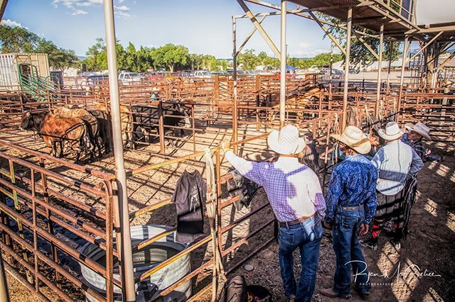 Checking out the stock.  Cowboys looking over the rough stock before the rodeo. . . . #westernlife #rurallife #rodeo #rodeolife #letsrodeo #roughstock #cowboys #cowboy #behindthescenes #editorialphotography #westerncolorado #westernart #rodeotime #bullriders #broncriders