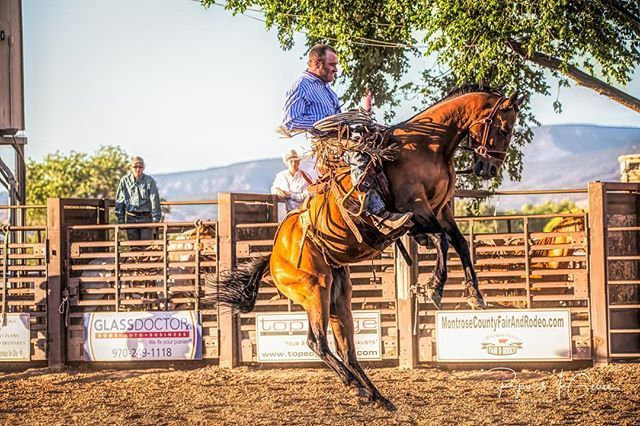 Up..up and away. . . . #westernlife #rurallife #rodeo #rodeolife #buckinghorse #buckingbronco #broncriding #broncrider #rodeophotographer #rodeophotography