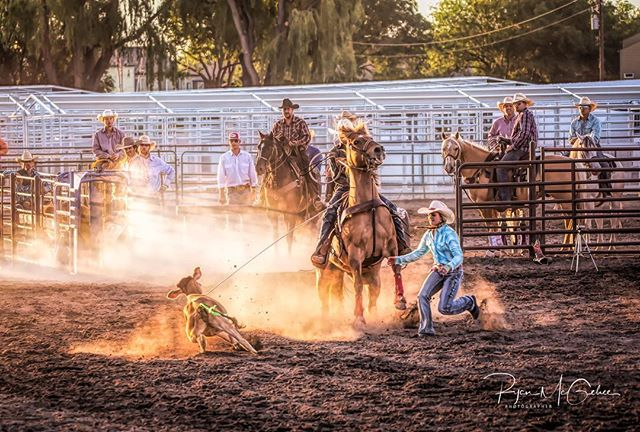 Thinking back to summer days, longer evenings, and rodeos. . . #rodeophotos #rodeolife #cowboylife #outwest #cowboy #cowgirl #westernlife #summerdays #rodeo #calfroping #summerfun #rodeophotographer #rodeophotography