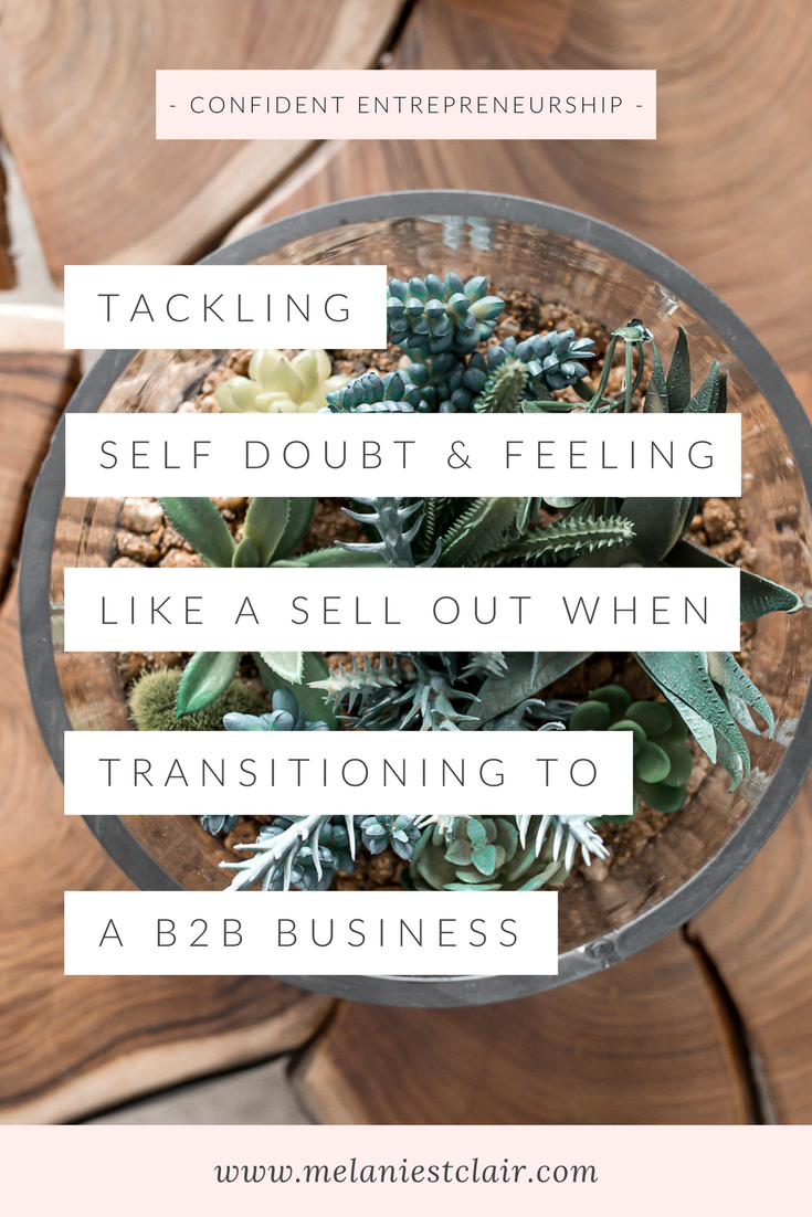 Self Doubt and Feeling Like a Sell Out When Transitioning to a B2B Business