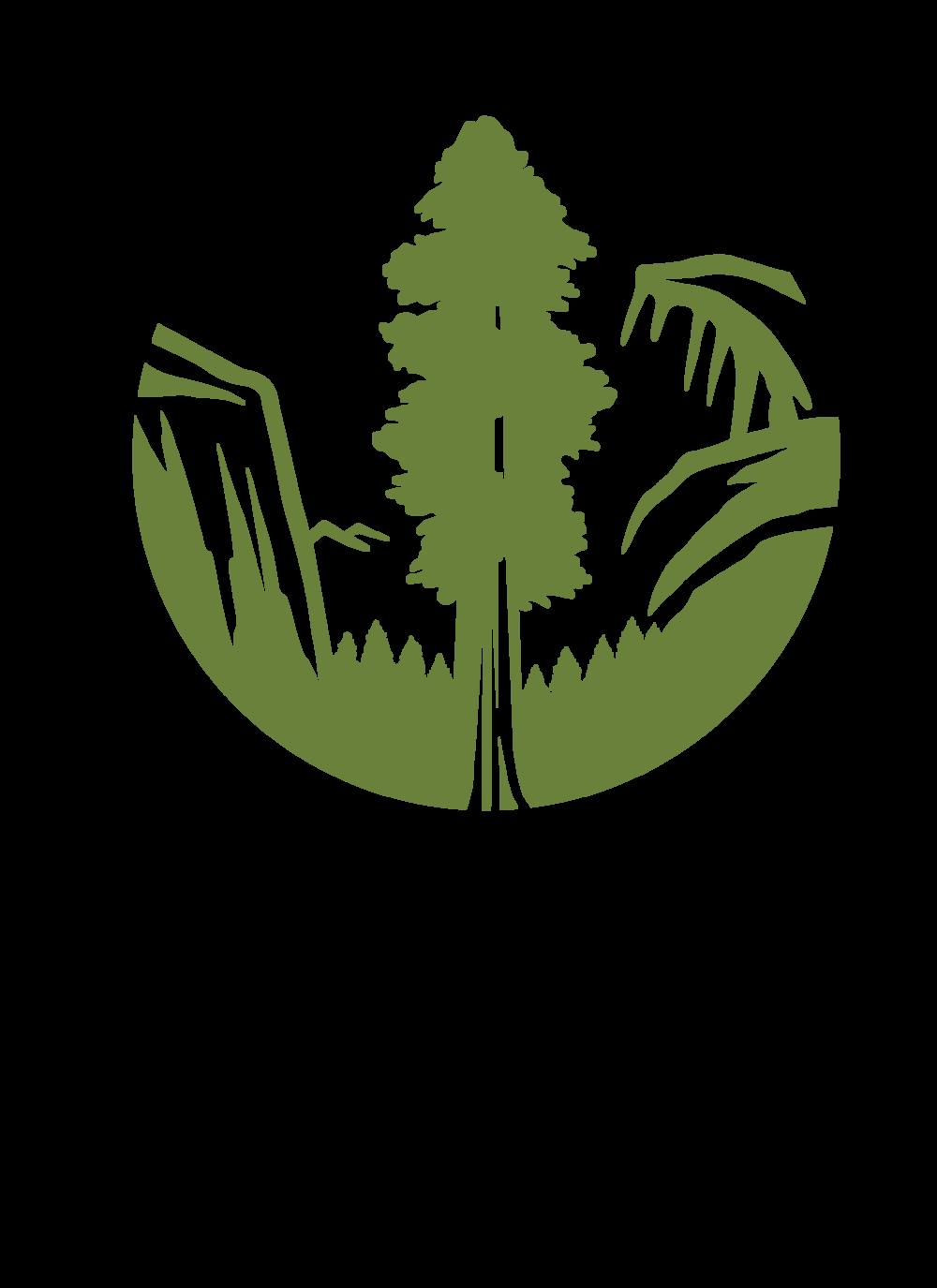 logo_sc_2016_tall.png