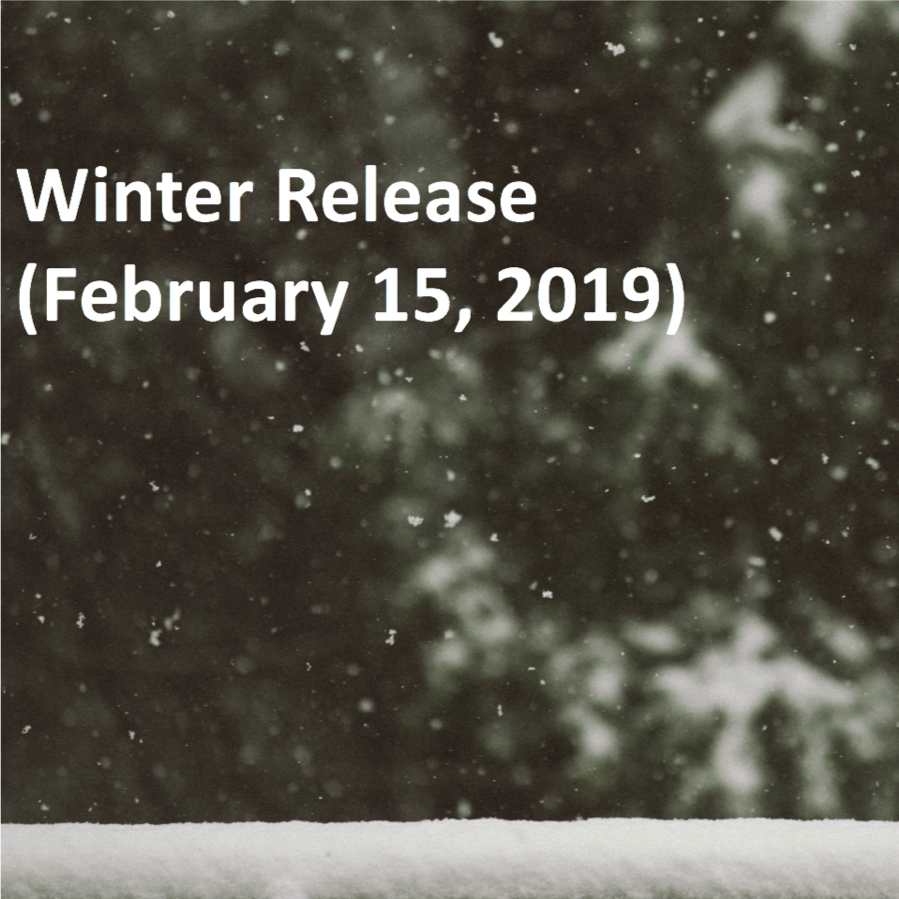 Winter Release '19 with Text.png
