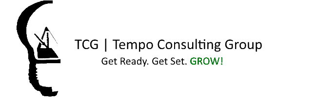 TCG Tempo Consulting Group | Marketing, Design, Website, Consulting, Clutching