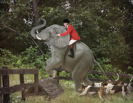 jumping elephant final w whip  web.jpg