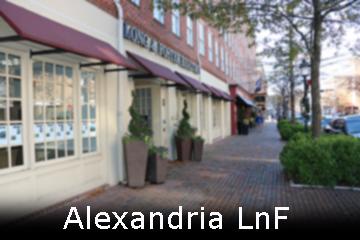 Alexandria LnF web.jpg