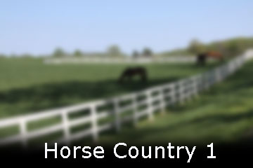Horse Country 1 web.jpg