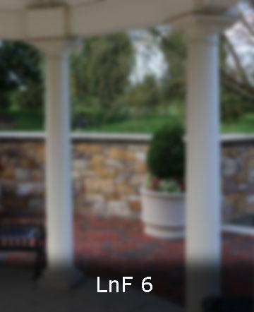 LnF 6 web.jpg