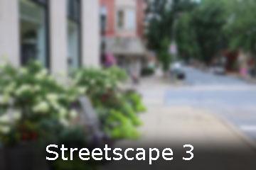 Street Scape 3 web.jpg