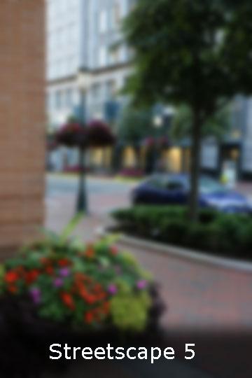 Street Scape 5 web.jpg