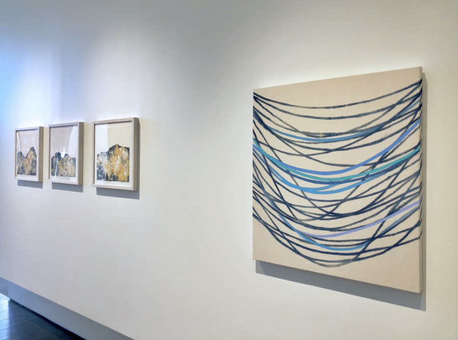 """BLUE"" EXHIBIT"