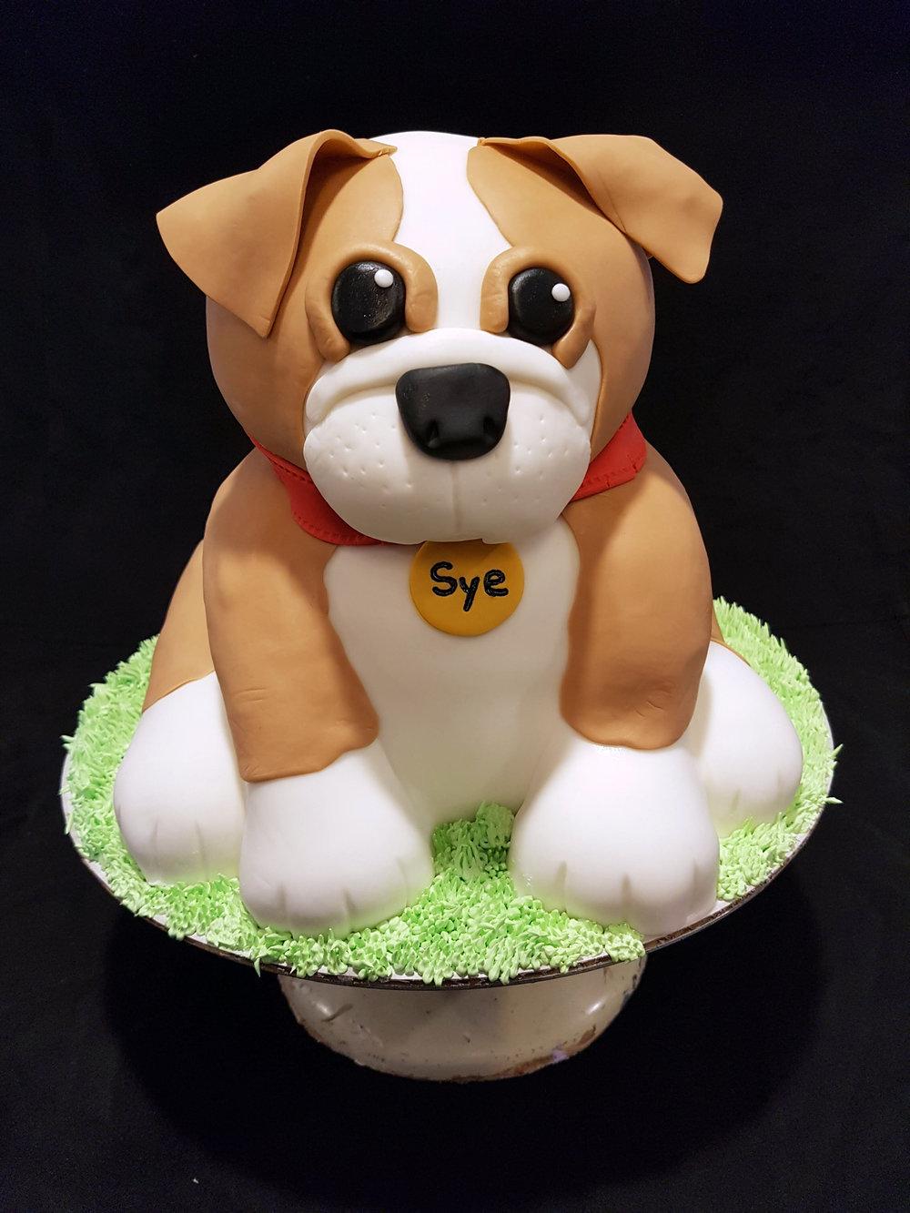 Askews_Cake_dog.jpg