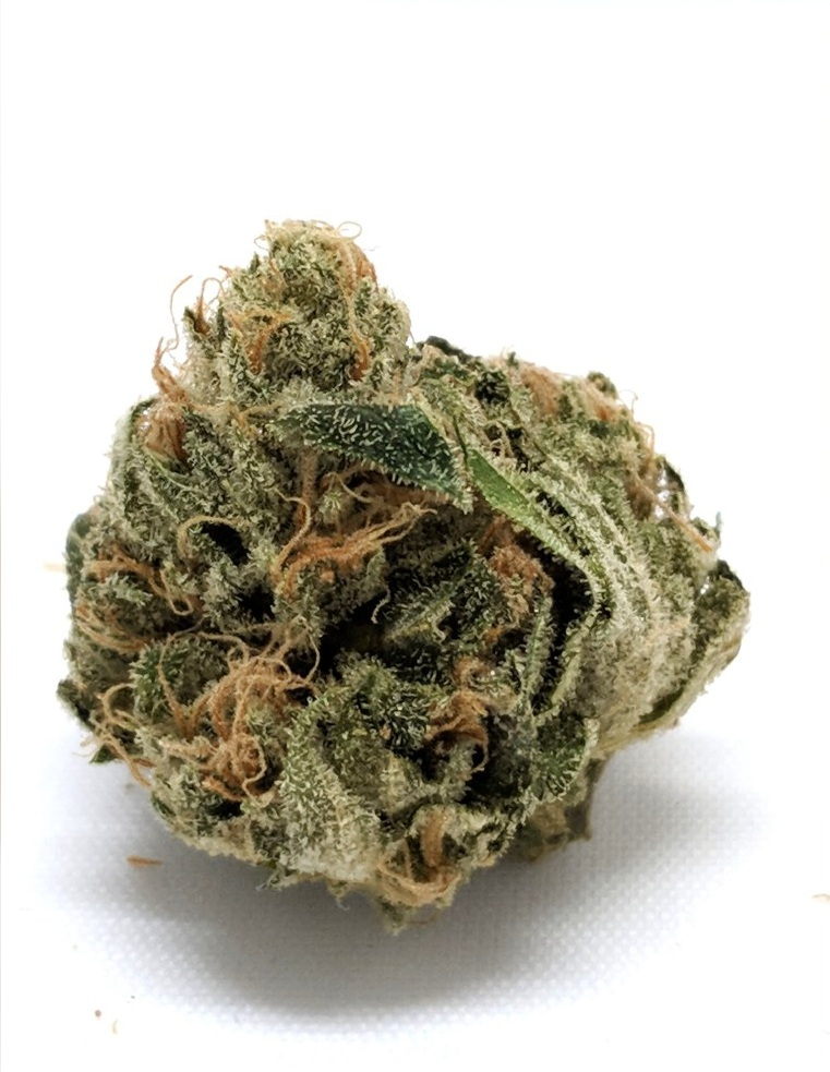 ANCIENT OG - HYBRID:85% Indica /15% SativaEarthy, flowery, citrus14.87% THC