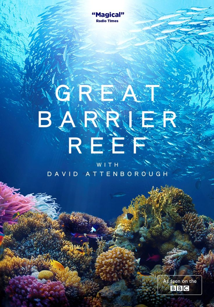 greatbarrierreef.jpg