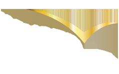 wingedvision-logo.png