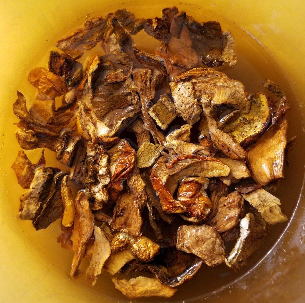 Dried Porcini Mushrooms.jpg