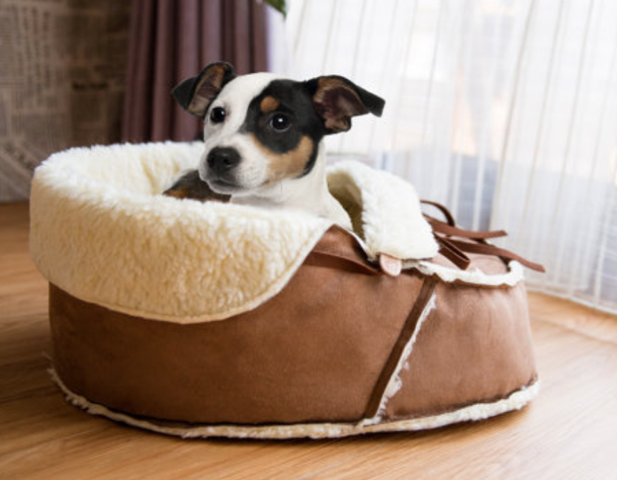 This moccasin pet bed is the CUTEST!!!! It can also be used for a cat.  I wish Carter could still fit in one.  They are made in the USA with faux sherpa and faux suede.