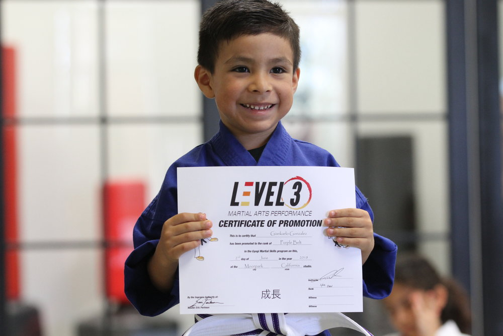 Level 3 MARTIAL ARTS PERFORMANCE - THOUSAND oaks:   Download the class schedule by clicking the button below.