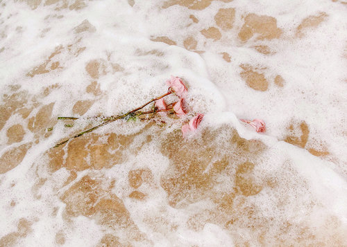 White Wash - Jasmine Dowling
