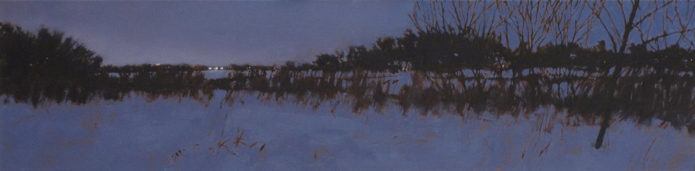 Winter Lights p.jpg