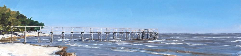 Pier Study