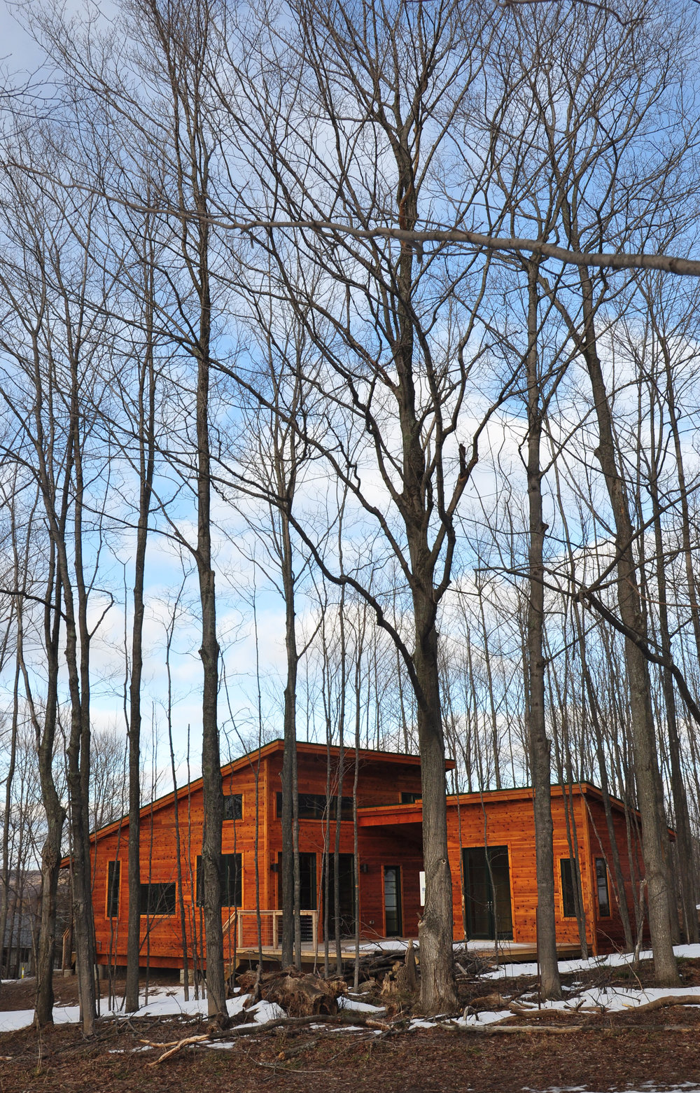 custom single family residential vacation house in forest trees, energy efficient outdoor living