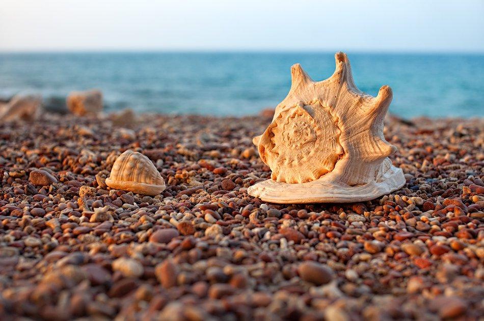 Qalansiyah Beach