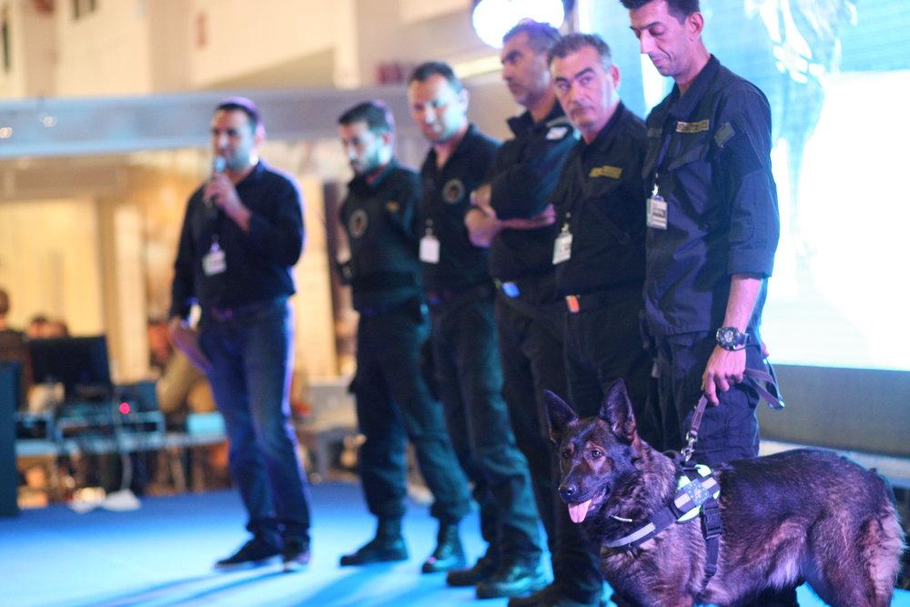 Επίδειξη εκπαιδευμένων σκύλων για ανεύρεση δηλητηριασμένων δολωμάτων