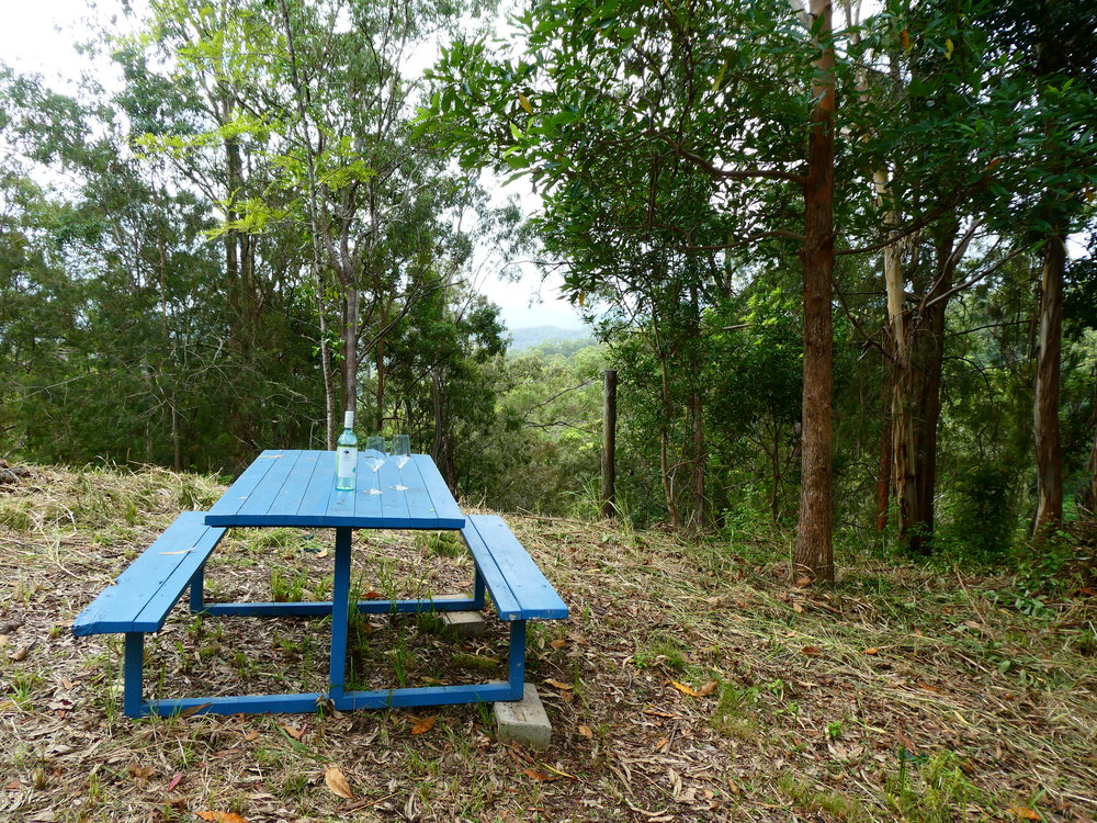 50M from cottage, easy walk, private picnic spot taking in views of Border Ranges.